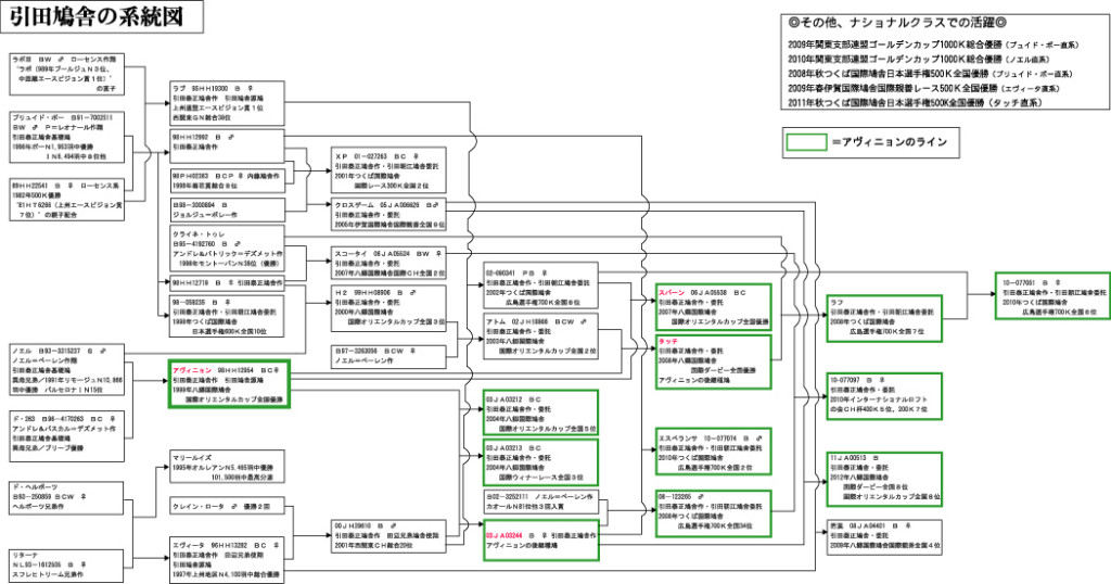 引田鳩舎血統図