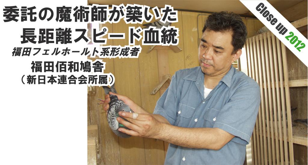 福田佰和鳩舎