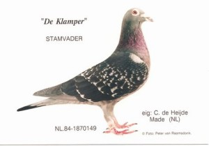 クランパー