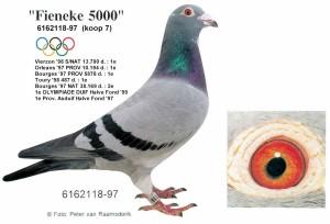 フィーネケ5000