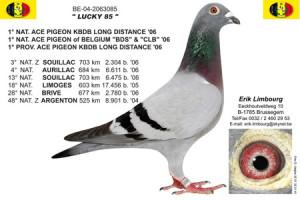 limbourgmartin64